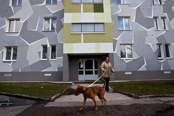 Bytovka v Ružinove.