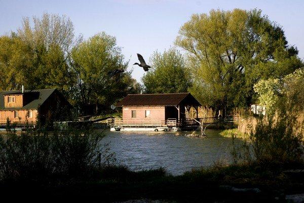 Jarovské rameno Dunaja s hausbótmi.
