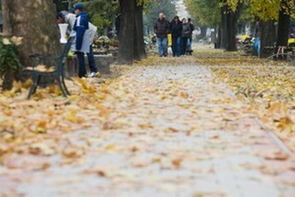 Najviac voľných miest je zatiaľ na Cintoríne Vrakuňa.