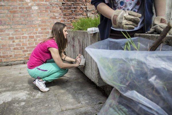 Grafity na mestských hradbách čistili začiatkom apríla študenti, viacerí prišli pomôcť opäť.
