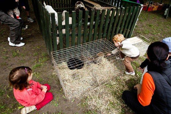 Na vlaňajších farmárskych trhoch mohli deti obzerať zvieratká.