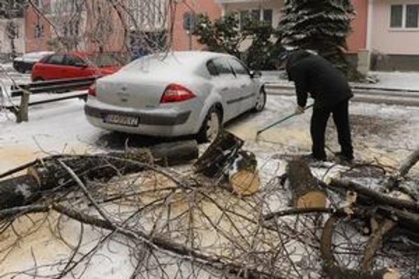 Stromy padali aj v zime.