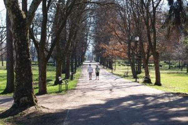 Po športovom vyžití a minizoo ponúkne park aj možnosti pre opekačku a grilovanie.