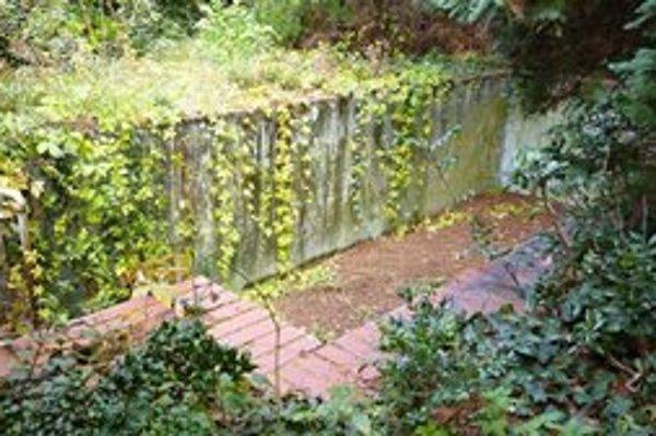 Kochova záhrada je dnes takmer neprechodná džungľa,dostanú sa do nej len tí,čo prídu pomáhať v jej upratovaní.
