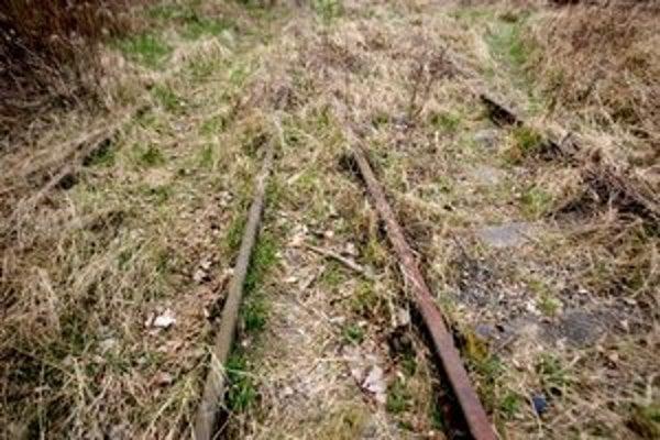 V zarastenom teréne v Petržalke sú zvyšky viedenskej električky. Kráčali sme po jej stopách.