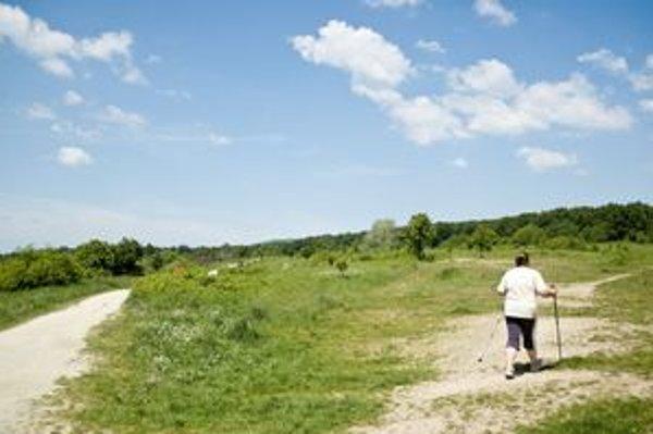 Chránenej lúke, ktorú využívajú najmä obyvatelia preľudnených Dlhých Dielov plánuje J&T Real Estate zastavať.