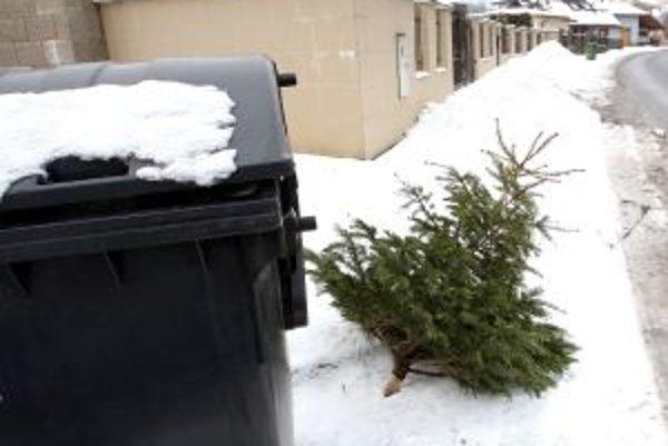 Stromčeky, ktoré zdobili príbytky Žiarčanov, nájdu druhotné využitie. Spracujú ich na štiepku.