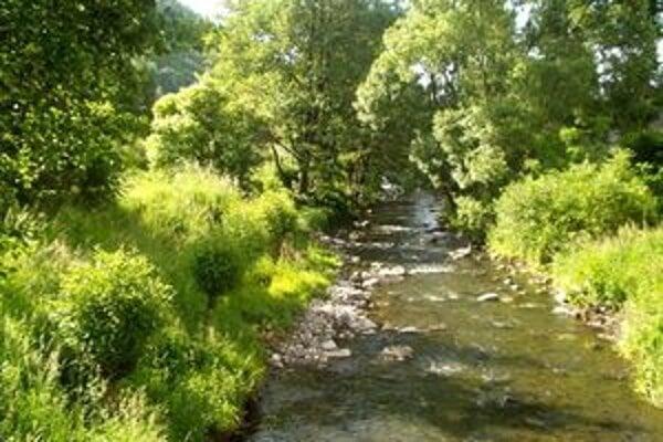 Malé drevené hrádze na zadržiavanie prívalovej vody stavajú na niekoľkých malých tokoch v okolitých kopcoch, ktoré sa v dedine vlievajú do riečky Štiavnica.