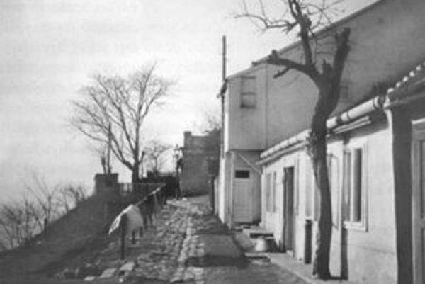Bubenkova ulica od Hradu, vpravo za stromom je dom č. 12. Stav z roku 1940.
