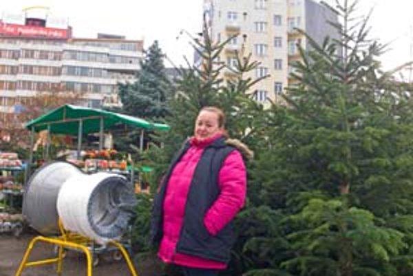 Rezané vianočné stromčeky sa  v meste orezávajú už niekoľko dní.