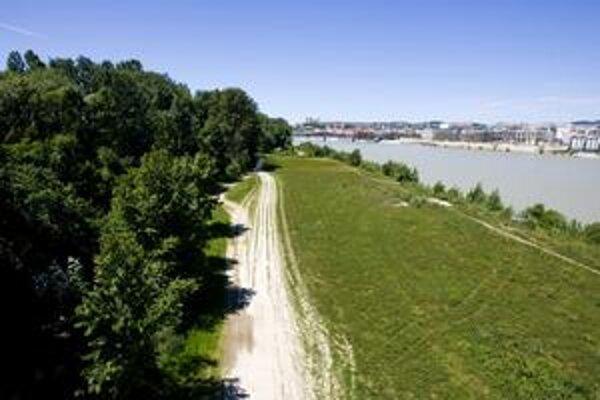 Posledné rozsiahle územie, ktoré je v meste neregulované, sa nachádza na pravom brehu Dunaja v Petržalke. Na snímke vidieť jeho nezastavateľnú časť.