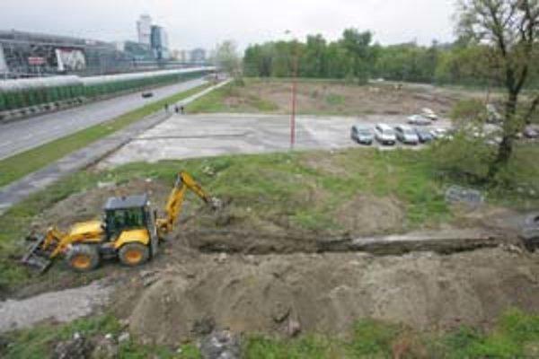 Výrub na pozemku, kde sa chystá výstavba, sa týkal 112 z vyše štyristo stromov.