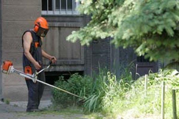 Na požiadanie obyvateľov Staré Mesto zabezpečí kosenie aj na pozemkoch, ktoré nevlastní, napríklad vo vnútroblokoch v okolí Šancovej ulice.
