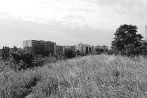 Na okraji Dúbravky, na nezastavanej ploche Dúbravčice, vznikne asi osemsto nových bytov.
