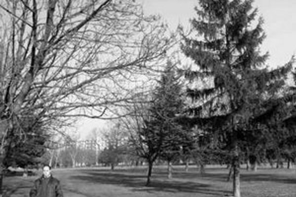 Ružinovčania sa boja, že park medzi Ružinovskou, Tomášikovou a Jadrovou zanikne.