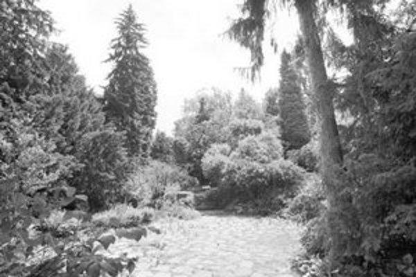 Kochovu záhradu založili v rokoch 1932 a 1933 ako súčasť Kochovho sanatória. Je dielom mlynianskeho záhradného architekta Jozefa Mišáka a tvorí ju 120 druhov cudzokrajných stálozelených a ihličnatých drevín.