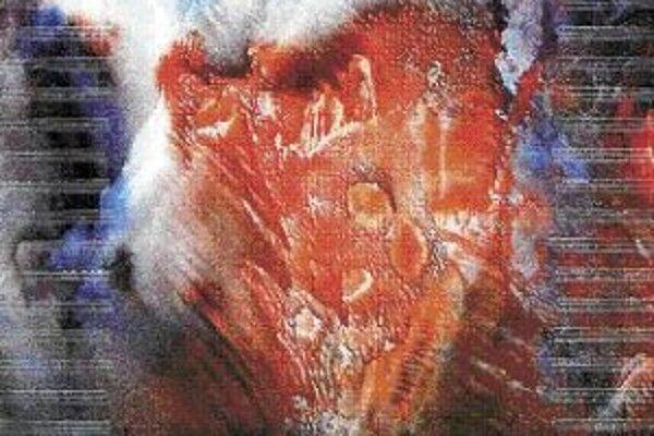 Květoslava Fulierová: Vesmírna partitúra.