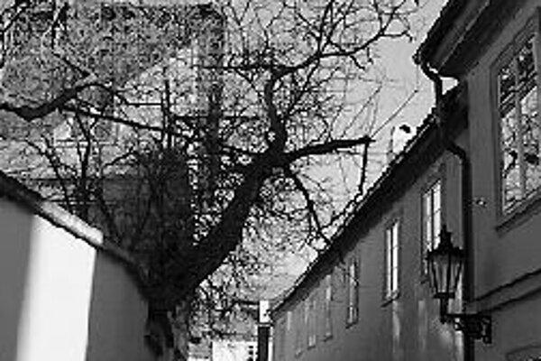 Októbrové potulky romantickými malostranskými uličkami v sprievode odborníčky - sprievodkyne Pražskej informačnej služby sa začínajú o 15.30 na vyhliadkovej rampe Pražského hradu nad Nerudovou ulicou. Akcia sa koná vo štvrtok 25. októbra.