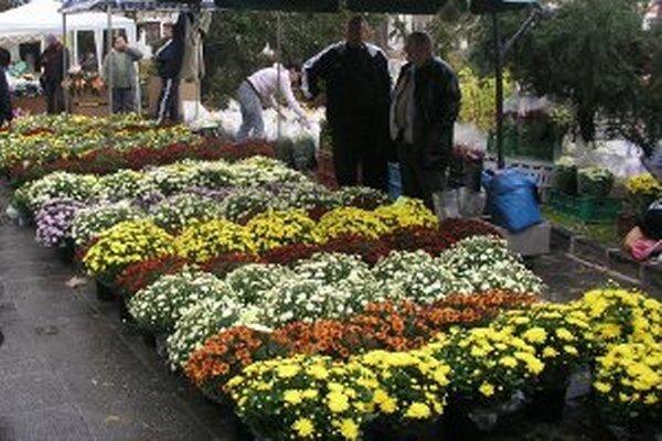 Na trhu sú tradične aj živé kvety.