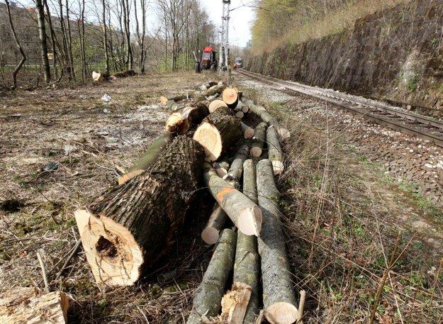Popri železnici z Banskej Bystrice do Radvane padla časť stromov začiatkom apríla.