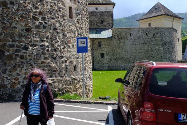 Mesto už pre taxislužbu vyhradilo stanovište na autobusovej stanici.