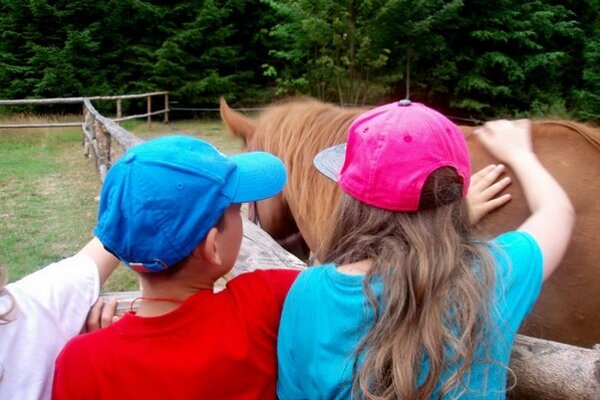 Počas leta organizujú pre deti letný tábor.
