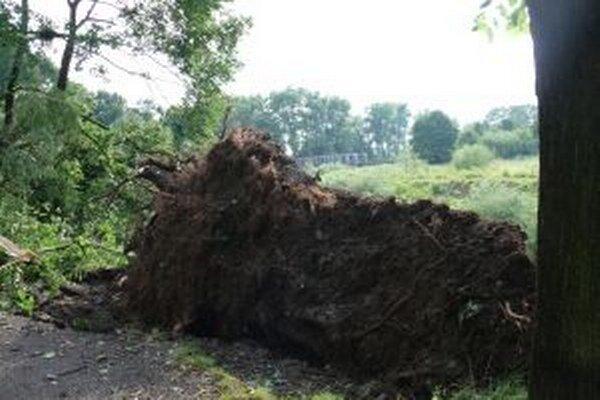Hrozná búrka sa v júli 2011 prehnala Čadcou. Stačilo niekoľko minút a najstarší park bol minulosťou.