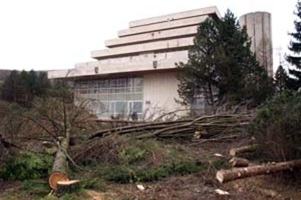 Kúpele Trenčianske Teplice vo štvrtok ráno vyrúbali parčík medzi hotelom Krym a liečebným domom Tri srdcia.