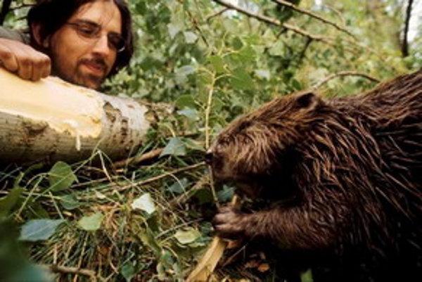 Tomáš Hulík pozoruje bobra.