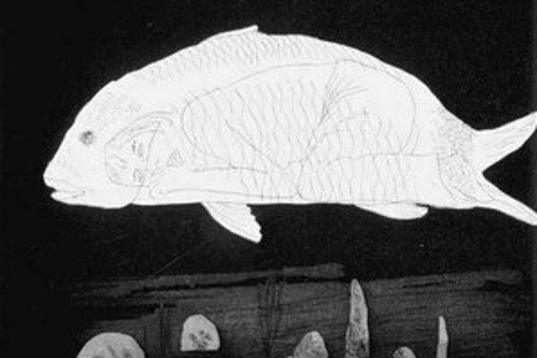 David Hockney: Chlapec ukrytý v rybe, výrez, 1969.