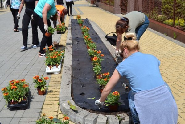 Vysadili stovky kvetov – materinu dúšku, levandule, šalvie, kokardy, voskovky, klinčeky a skalničky.