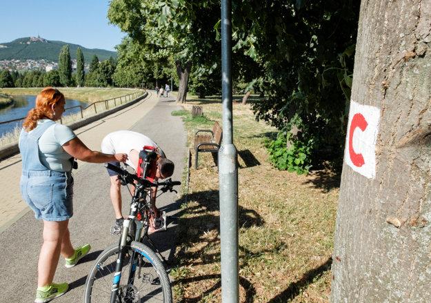 V Nitre a okolí sa postupne rozširuje Cyklistická infraštruktúra.