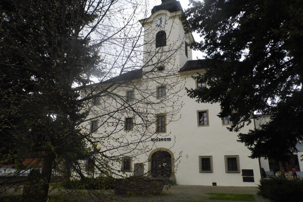 Prehliadku organizuje Pohronské múzeum v spolupráci s mestskými poslancami.