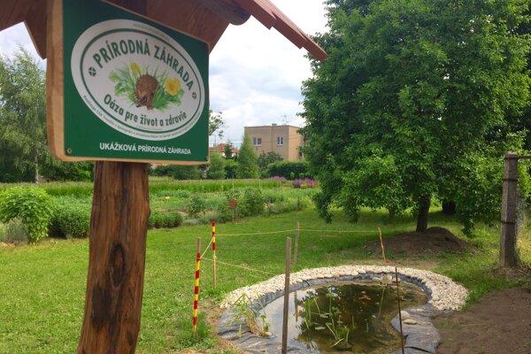 Prírodná záhrada v škole slúži na vyučovanie aj oddych.