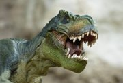 Tyranosaurus rex v skutočnosti nemal šupiny. Bol operený ako vták.