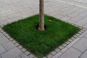 Kovové kryty nahradila tráva.