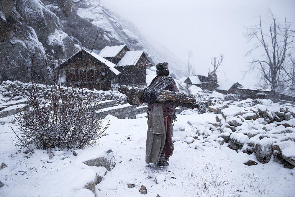 3. miesto kategória Ľudia. Stará žena z kmeňa Kinnaur nesie v silnom mraze v Himáčalpradéši kus dreva, aby si mohla v dome zakúriť.