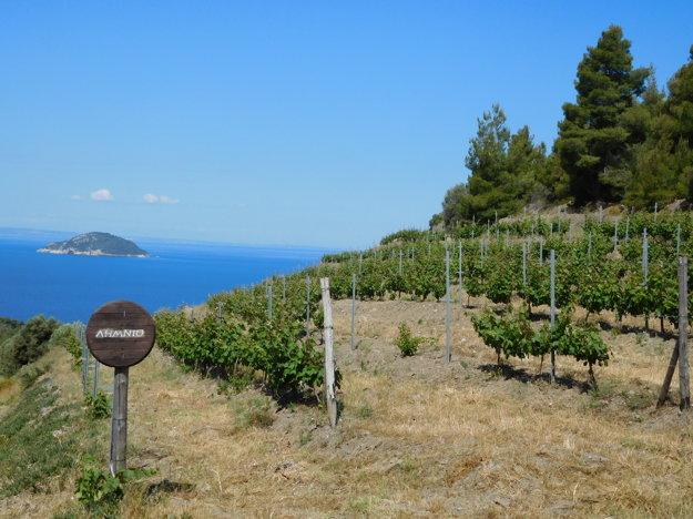 Všade naokolo dýcha proszredie romantikou vďaka viniciam a olivovým hájom.