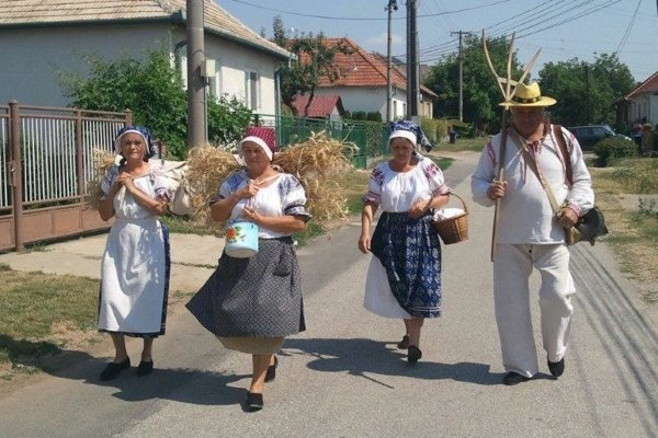Oslavy Sviatku nového chleba v Dražovciach.