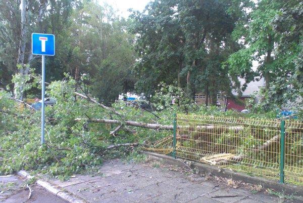 Strom zdemoloval plot školy.