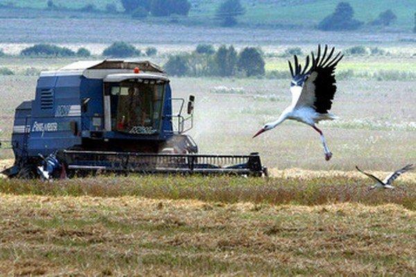 Pri nadobúdaní pôdy sa môže zohľadňovať aj prax v poľnohospodárstve.
