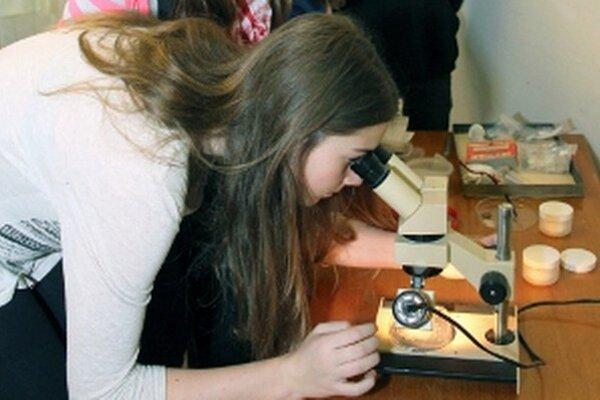 Žiaci si v Hornonitrianskom múzeu v Prievidzi pozerajú štruktúru hornín pomocou binokulárnej lupy.