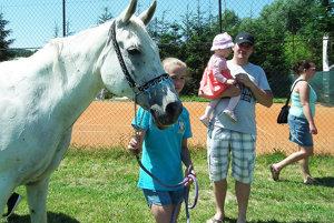 Z koníkov sa tešili malí aj veľkí.