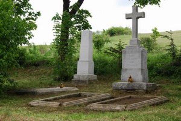 Holumnica. Tu je pochovaný Szilárd Raisz a jeho dcéra.