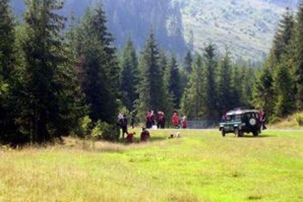 Lesy. Ani na x-tý pokus sa ich nepodarilo predať. Pritom záujemcovia chodili z rôznych kútov, nedávno napríklad aj z Lichtenštajnska.