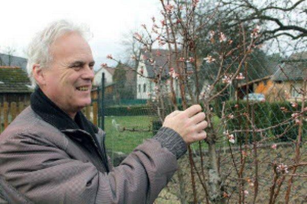 Milan Naštický ukazuje kvety, ktoré sú na okrasnom kríku počas zimy.