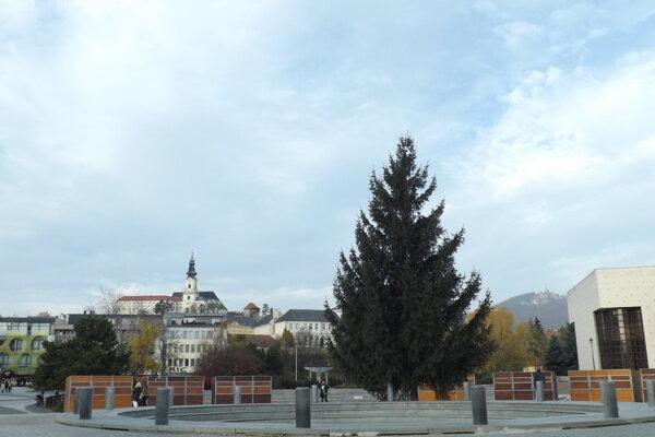 Vianočný stromček už stojí na Svätoplukovom námestí.