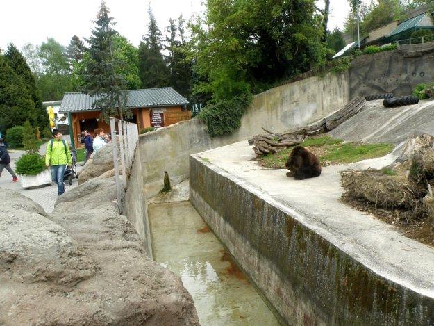 Výbeh pre medvede v bojnickej zoo.