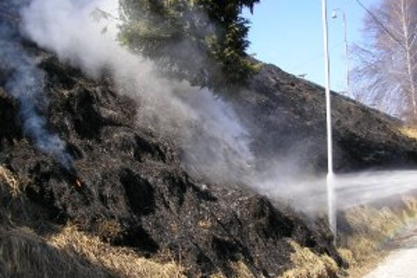 Veľkým problémom je každoročne aj vypaľovanie trávy.