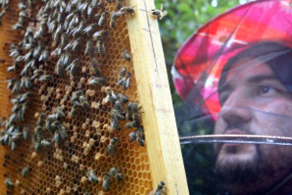 Včelári sa zo skončenej sezóny príliš netešia.